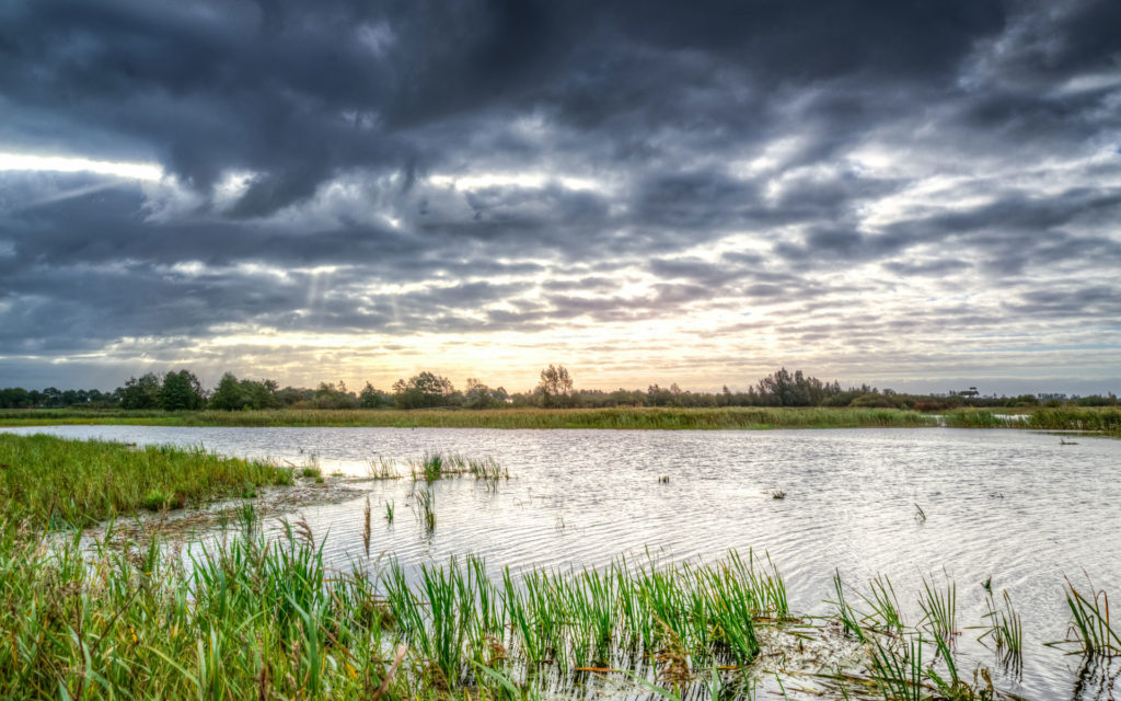 A photo of a cloudy sunset sky over a swamp for SSDN members Louisiana